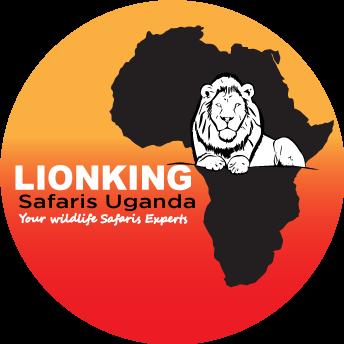 Lion King Safaris Uganda | 10 DAY WESTERN UGANDA SAFARI - Lion King Safaris Uganda